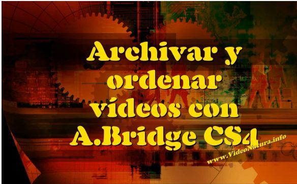 Biblioteca de vídeo con Bridge CS4